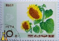 Sunflowers looking left, North Korea, stamp, pland, flower, seed, Helianthus annuus, 10, 1974