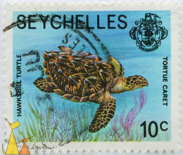 Swomming Hawksbill, Seychelles, stamp, Tortue caret, reptile, turtle, coat of arms, 10 c, Hawksbill turtle, Eretmochelys imbricata