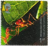 Texas leafcutter ants, , stamp, insect, ant, Atta texana, 1 st, Millenium, 2000, 14, Web od Life, London Zoo, Queen Elizabeth II