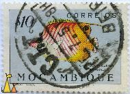 Threadfin Butterflyfish, Mocambique, Mozambique, stamp, fish, $10, Forskal, Lio Nacional Portugal, Correios, Chaetodon auriga