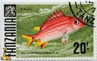 Threespot Squirrelfish, Tanzania, stamp, coat of arms, fish, 20, Kifuvu, Holocentrus cornutus, Sargocentron cornutum