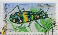 Tiger Beetle, Mongolia, stamp, insect, 1991, 60, beetle, L Bumandorj, Cicindela chinensis
