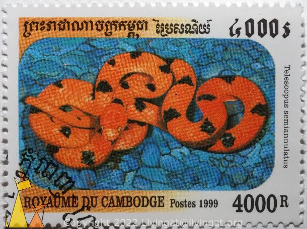 Tiger Snake, Royaume du Cambodge, Cambodia, stamp, reptile, snake, Telescopus semiannulatus, Tiger Snake, 4000R, Royaume du Cambodge, Postes, 1999