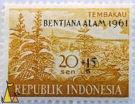 Tobacco plantation, Republik Indonesia, Indonesia, stamp, Tembako, plant, crop, 20 Sen, farming, Nicotiana spp, Bentjana alam, 1961, +15 s