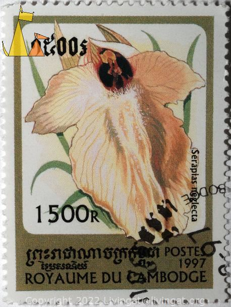 Tongue orchid, Royaume du Cambodge, Cambodia, stamp, plant, orchid, flower, 1500 R, 1997, Postes, Serapias neglecta