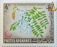 Tree flower, Afghanes, Afghanistan, stamp, plant, flower, Postes, 4 Ps, Les croissant rouge Afghan