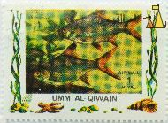 Tricolor sharkminnow, Umm al Qiwain, Umm al Quwain, UAE, stamp, fish, Air Mail, 1 Riyal, Balantiocheilos melanopterus