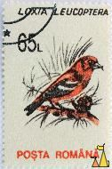 Two-barred Crossbill, Romania, stamp, bird, Loxia leucoptera, 65 L, Posta