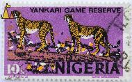 Two Cheetahs, Nigeria, stamp, mammal, cat, Acinonyx jubatus, Yankari Game Reserve, 10 k