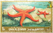 Two Common Starfish, Umm al Qiwain, UAE, stamp, Starfish, 1 Rls, Air Mail, Common Starfish, Asterias rubens