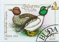 Two Goledneyes, Magyar, Hungary, stamp, bird, duck, Varga Pal, 1988, Posta, 2 Ft, Kerce rece, Bucephala clangula