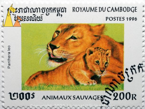 Two Lions, Royaume du Cambodia, Cambodia, stamp, mammal, lion, Panthera leo, 200 R, Animaux Sauvages, Postes, 1996