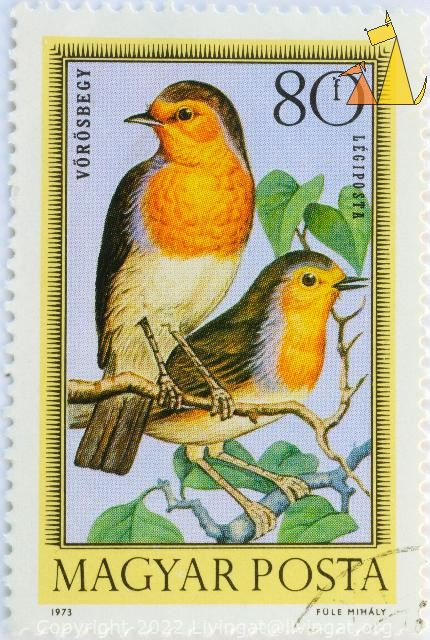 Two Robins in a tree, Magyar, Hungary, stamp, bird, 80 f, Legiposta, Posta, 1973, Fule Mihaly, Vörösbegy, Erithacus rubecula