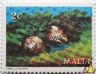Two Shells, Malta, stamp, shell, 2 c, Gibbula nivosa