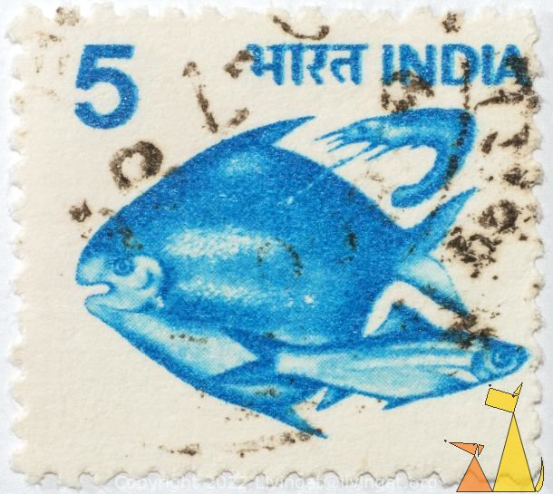 Two blue fish, India, stamp, fish, blue fish, 5