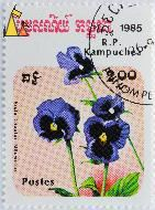 Ullswater, RP Kampuchea, Cambodia, stamp, plant, flower, 1985, postes, 2.00 Riels, Viola tricolor