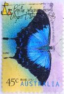 Ulysses Butterfly, Australia, stamp, insect, 45 c, butterfly, 1998, Papilio ulysses