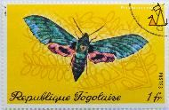 Verdant Hawk-moth, Republique Togolaise, Togo, stamp, insect, butterfly, Postes, Shamir, 1 fr, Euchloron megaera