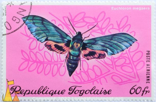 Verdant Hawk-moth, Republique Togolaise, Togo, stamp, insect, butterfly, Postes, Shamir, 60 fr, Euchloron megaera, pink