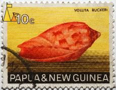 Voluta ruckeri, Papua and New Guinea, Papua New Guinea, stamp, shell, Voluta ruckeri, 10 c