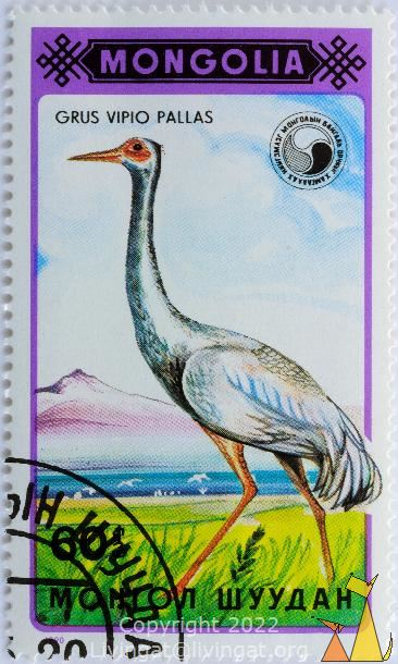 Walking Siberian Crane, Mongolia, stamp, bird, Grus vipio pallas, flying, 1990, 60, Grus leucogeranus