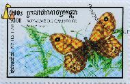 Wall Brown, Royaume du Cambodge, Cambodia, stamp, insect, butterfly, Postes, 1998, 500 R, Pararge megera
