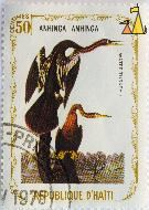Water Turkey, Republique D'Haiti, Haiti, stamp, bird, 50 Centimes, Anhinga anhinga, 1975