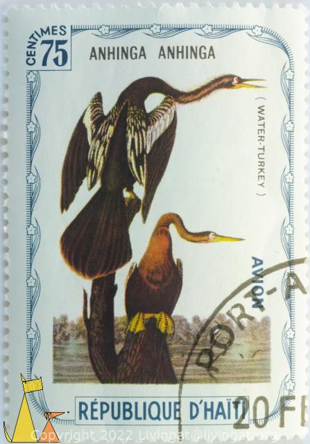 Water Turkey, Republique D'Haiti, Haiti, stamp, bird, 75 Centimes, Avion, Anhinga anhinga