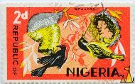 Weavers on Red, Republic of Nigeria, Nigeria, stamp, red, bird, weavers, 2 d, NSP M Co Ltd, Maurice Revet, Malimbus rubricollis, Ploceus cucullatus