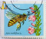 Western Honeybee, DDR, Germany, stamp, insect, bee, blue, 1990, 10, Apis mellifera