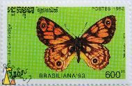 Western Xenica, Etat du Cambodge, Cambodia, stamp, insect, butterfly, Brasiliana 93, Postes, 1993, 600 R, Geitoneura minyas