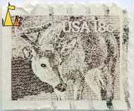 White-tailed Deer, USA, stamp, mammal, deer, Odocoileus virginianus, 18 c
