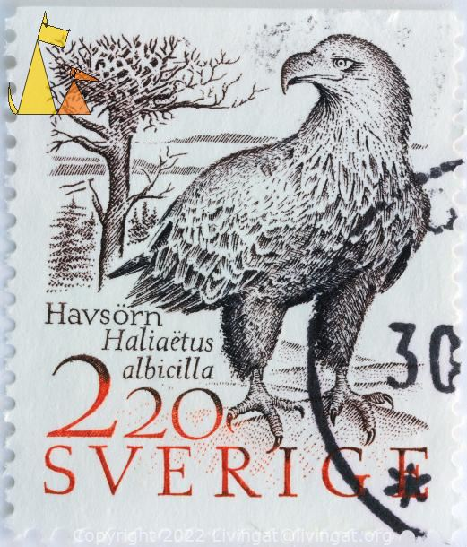White-tailed Eagle, Sverige, Sweden, stamp, bird, bird of prey, 2.20, Havsörn, Haliaeetus albicilla