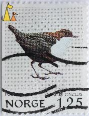 White-throated Dipper, Norge, Norway, stamp, bird, VR, 1.25, 1980, Cinclus cinclus, Fossekall