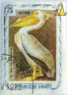 White Pelican, Republique D'Haiti, Haiti, stamp, bird, 75 Centimes, Pelecanus erythrorhynchos, Avion, 1975
