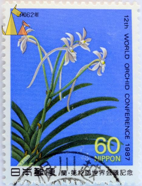 White orchid, Nippon, Japan, stamp, plant, flower, orchid, 60
