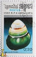 White to green shell, R.P. Kampuchea, Cambodia, stamp, fish, Postes, 1988, 0.20 R, Helicostyla florida