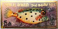 Whitespotted boxfish, Umm al Qiwain, Umm al Quwain, UAE, stamp, fish, 15 dh, Ostracion meleagris