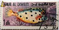 Whitespotted boxfish, Umm al Qiwain, Umm al Quwain, UAE, stamp, fish, 1 dh, Ostracion meleagris