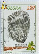 Wild Boar, Polska, Poland, stamp, mammal, trophy, rifle, weapon, scope, Sus scrofa, Dizik, 2.00, PWPW, 81, W Surowiecki