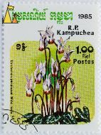 Wild Persian Cyclamen, RP Kampuchea, Cambodia, stamp, plant, flower, postes, 1.00 Riel, Cyclamen persicum