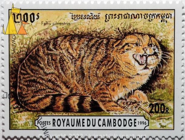 Wildcat, Royaume du Cambodge, Cambodia, stamp, mammal, cat, Felis silvestris, 200 R, Postes, 1996, Chat Sauvages