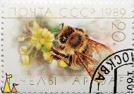 Working Western Honeybee, CCCP, Russia, stamp, insect, bee, 1989, 20 K, Apis mellifera