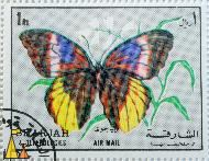 Yellow-Edged Giant-Owl, Sharjah and Dependencies, Sharjah, stamp, air mail, insect, butterfly, Caligo atreus, 1 Rl