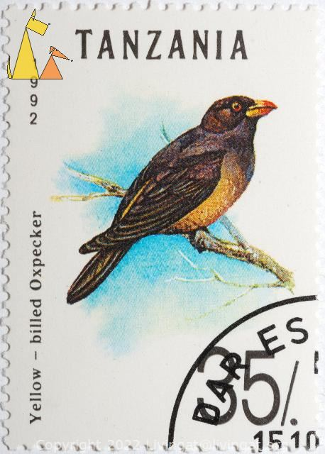 Yellow-billed Oxpecker, Tanzania, stamp, bird, Yellow-billed Oxpecker, Buphagus africanus, 1992, 35