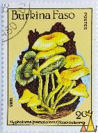 Yellow-brown Woodtuft, Burkina Faso, stamp, mushrom, 1985, Postes, 20 f, Hypholoma (nematoloma) fasciculare