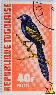 Yellow-shouldered Widowbird, Republique Togolaise, Togo, stamp, bird, long tail, Postes, Shamir, 40 f, Coiiuspasser macrocercus, Euplectes macroura, red