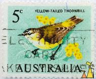 Yellow-tailed Thornbill, Australia, stamp, bird, 5 c, Acanthiza chrysorrhoa