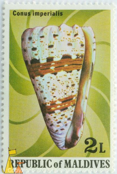 imperial cone, Republic of Maldives, Maldives, stamp, shell, 2 L, Conus imperialis